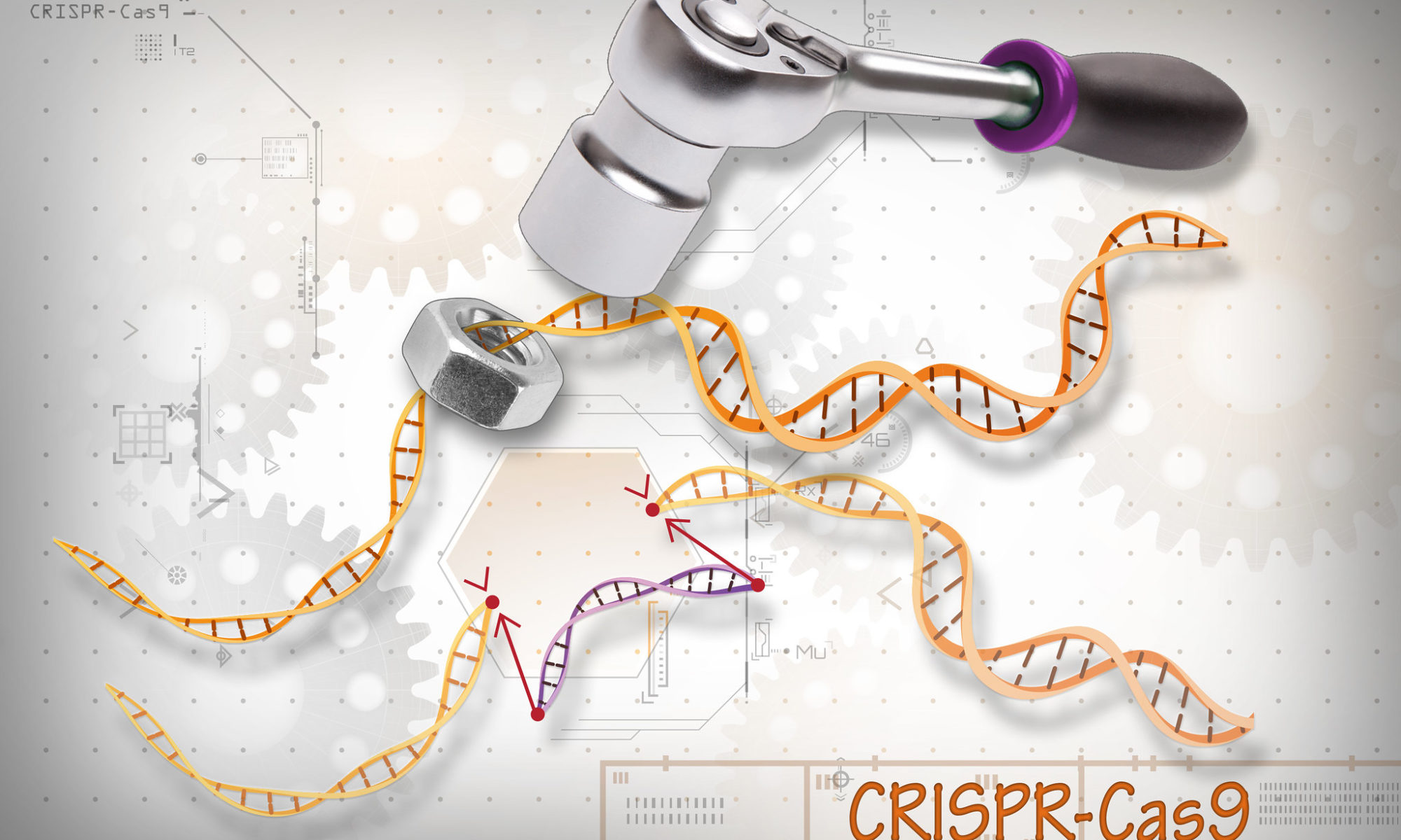 Crispr-Cas9, les « ciseaux génétiques », fruit des récentes avancées en recherche génomique. Illustration CC-by-nc par National Institutes of Health https://flic.kr/p/Ja54yu.