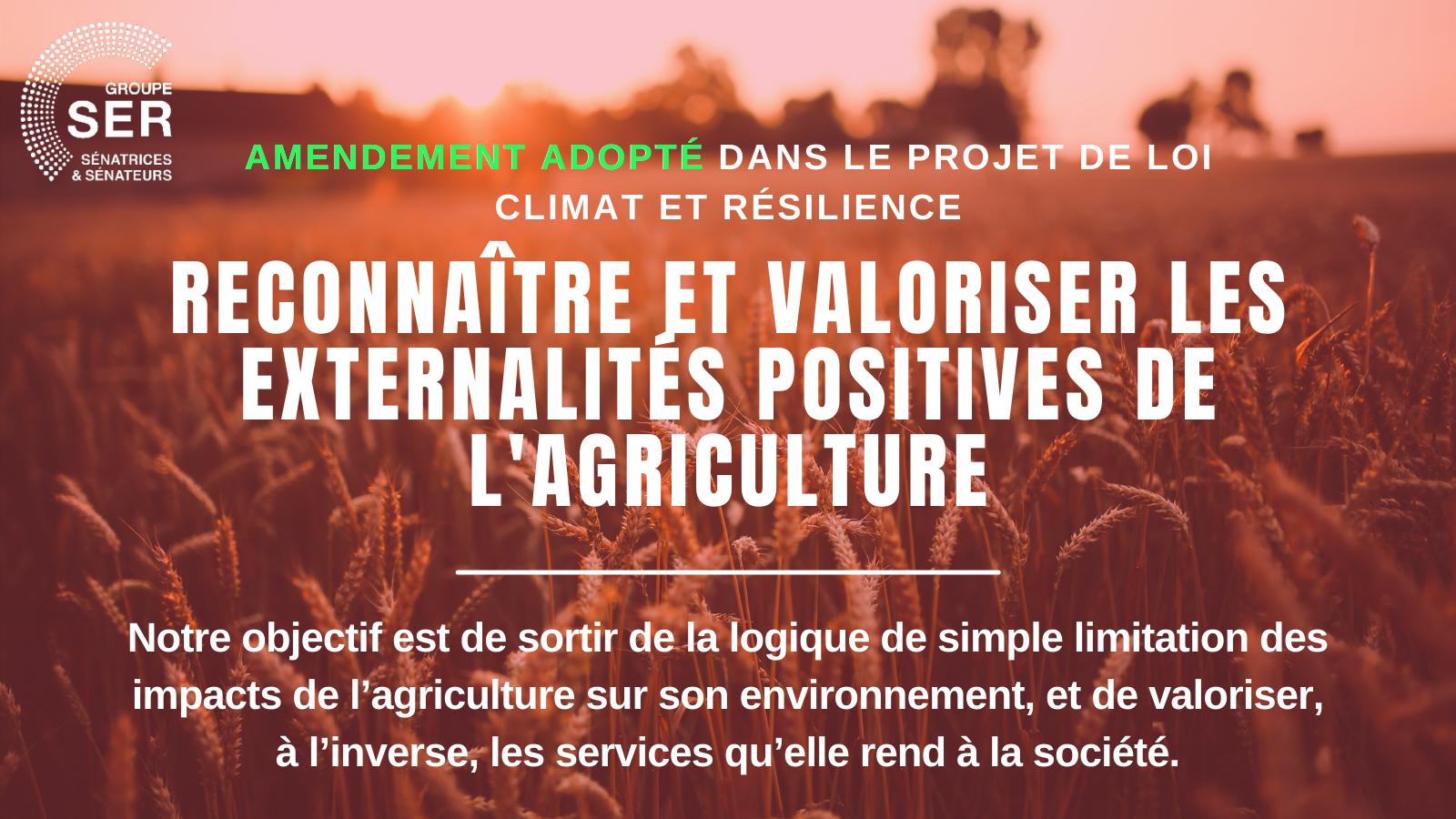 Externalités positives agriculture